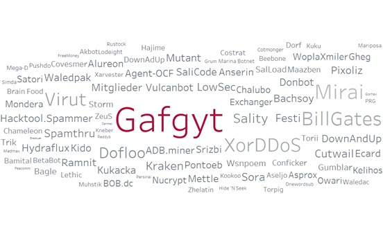 A Look into the Gafgyt Botnet Trends from the Communication